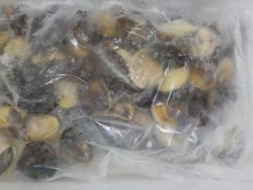 6冷凍ハマグリ2018501