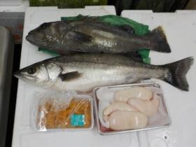 13鮮魚セット2018501
