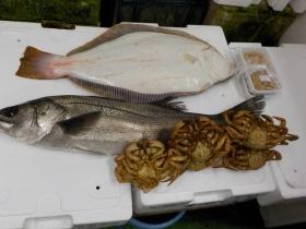 1鮮魚セット2018503
