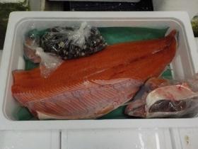 9鮮魚セット201864
