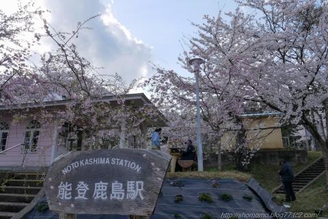 180409SAKURA_01.jpg