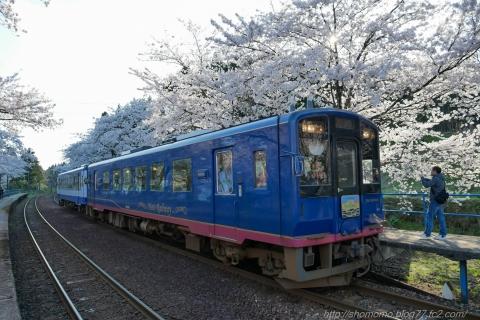 180409SAKURA_09.jpg
