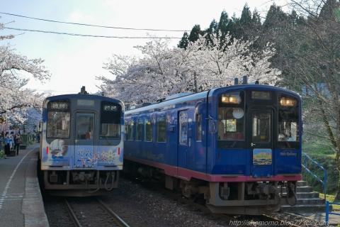 180409SAKURA_11.jpg