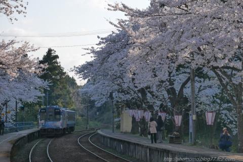 180409SAKURA_12.jpg