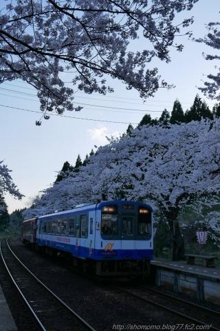 180409SAKURA_13.jpg