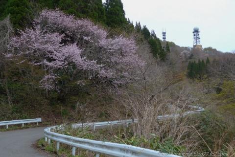 180417HOUDATSU_03.jpg