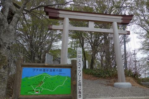 180417HOUDATSU_08.jpg