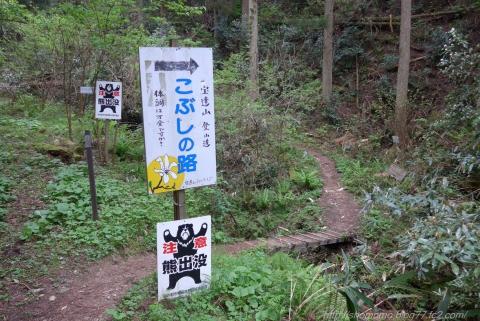 180423HOUDATSU_01.jpg