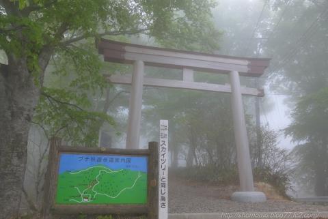 180423HOUDATSU_10.jpg