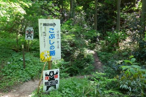 180511HOUDATSU_01.jpg