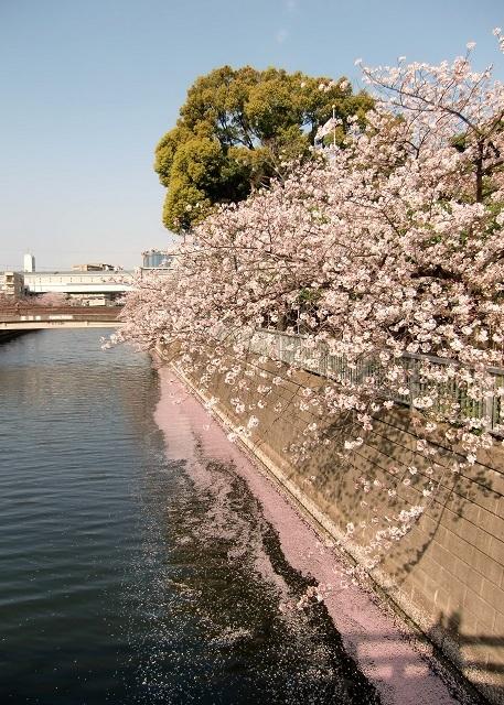 奥に見えるのは京浜急行 新馬場駅