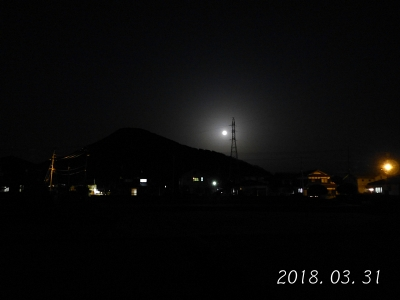 P1330772.jpg