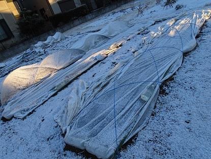 2017-02-19雪景色 (5)