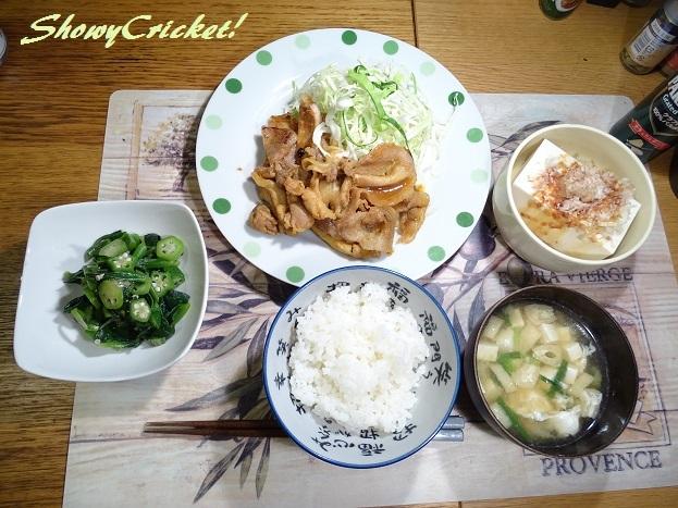 2017-08-07豚肉の味噌漬け (1)