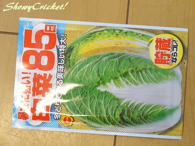 2017-08-31白菜 (5)