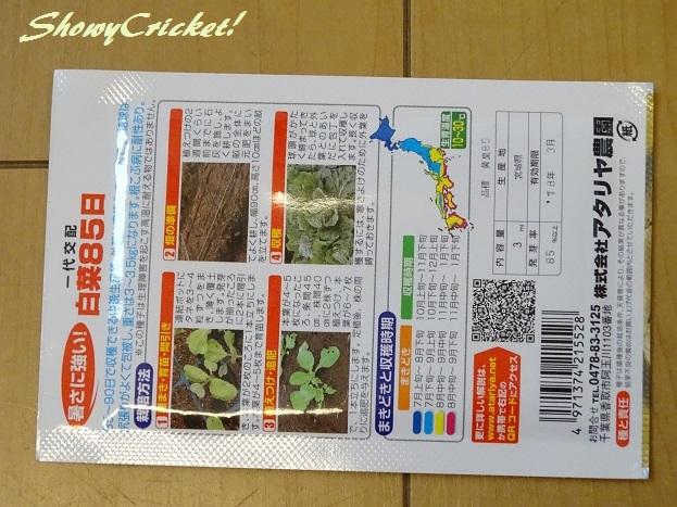 2017-08-31白菜 (6)