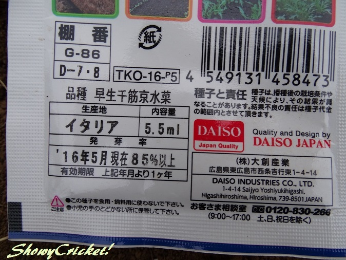 2017-09-16水菜 (5)