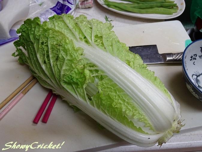 2017-10-28白菜 (10)