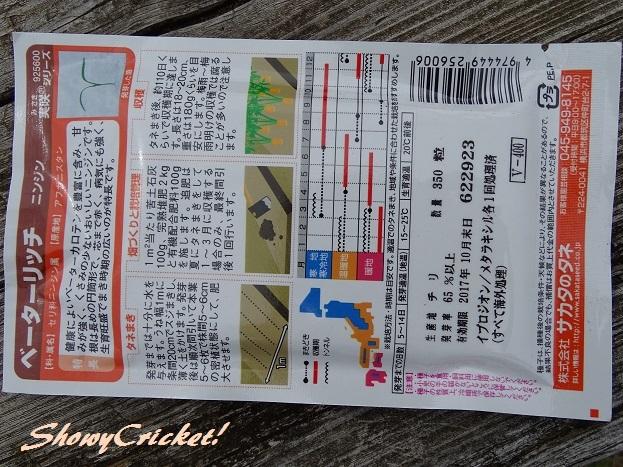2017-06-18ニンジン (2)