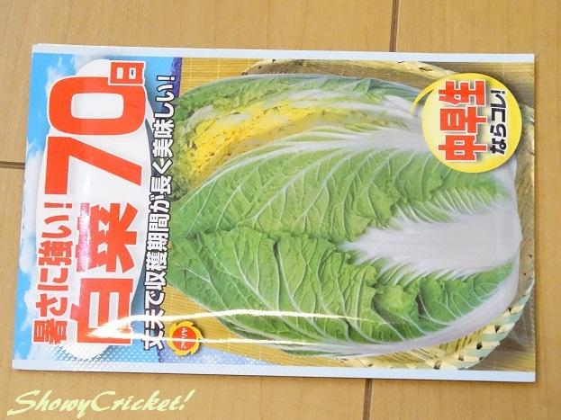 2017-08-31白菜 (7)