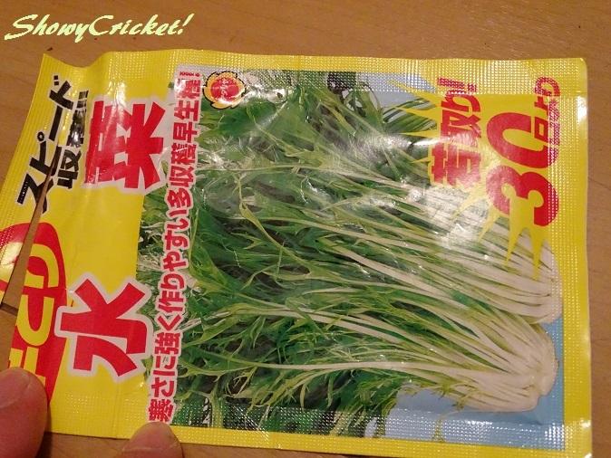 2018-01-30水菜 (1)