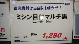 DSC_1248.jpg