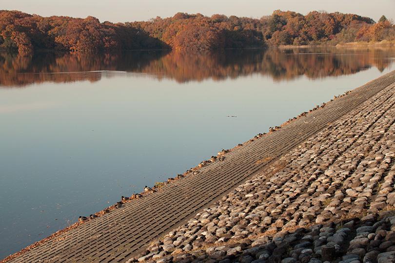 静かな湖岸IMG_4357