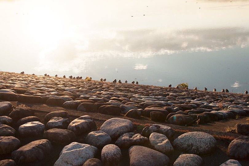 石の湖岸IMG_4501