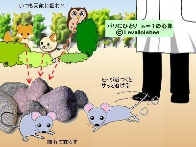 野生のマウスは弱いので臆病