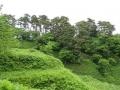 kasugayama4.jpg