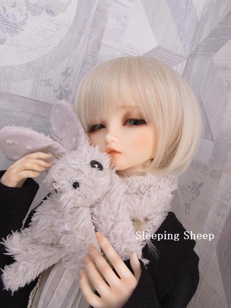 RIMG2904-2迷夢