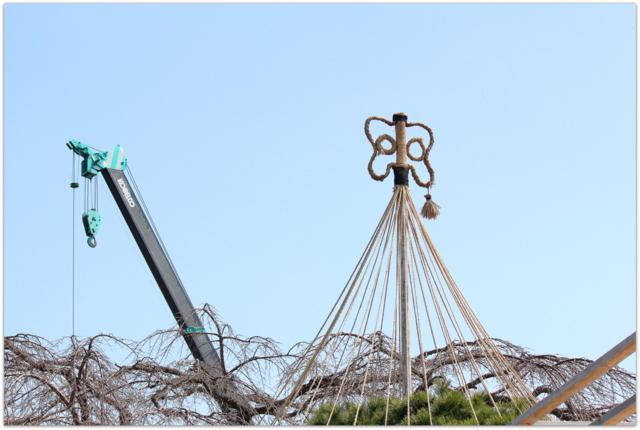 青森県 弘前市 弘前公園 弘前城 観光 写真 雪吊り