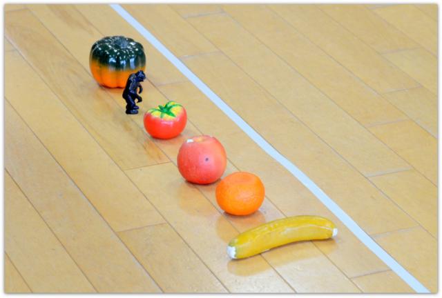青森県 弘前市 保育園 スナップ 写真 撮影 出張 カメラマン イベント 行事 インターネット 販売 英語教室