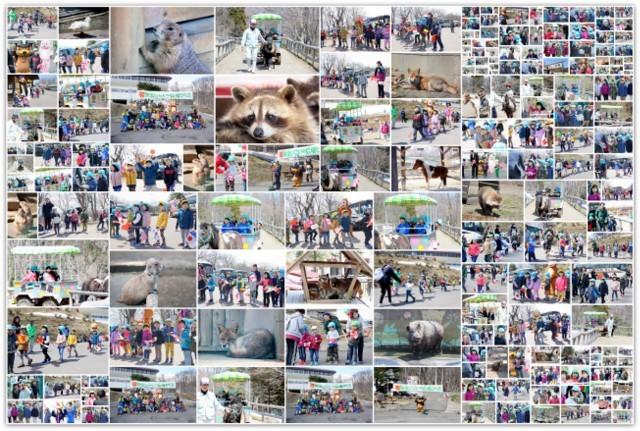 青森県 弘前市 弥生いこいの広場 開場式 セレモニー 式典 出張 写真 撮影 スナップ カメラマン 保育園 行事 イベント