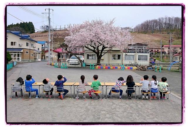 青森県 弘前市 保育園 園庭 桜 写生大会 スナップ 写真 出張 撮影 カメラマン インターネット スナップ 販売