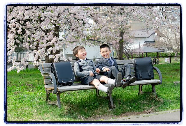 青森県 弘前市 吉野町緑地公園 キッズ ロケーション 小学校 入学 記念 写真 撮影 出張 カメラマン メモリアルドッグ 桜 春