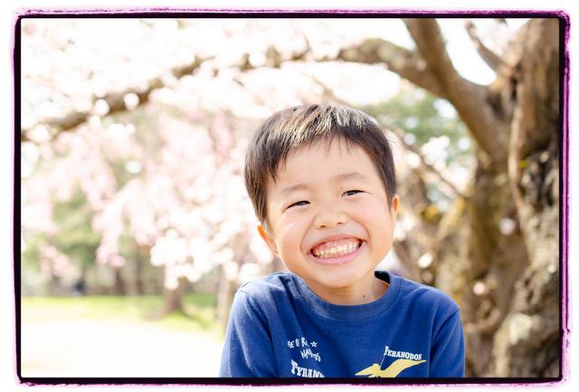 青森県 弘前市 弘前公園 弘前さくらまつり 弘前城 出張 写真 撮影 カメラマン キッズ ロケーション フォト 家族 記念 桜