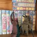 本棚とおもちゃ 7