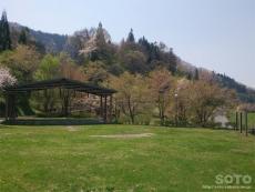 中条(公園1)