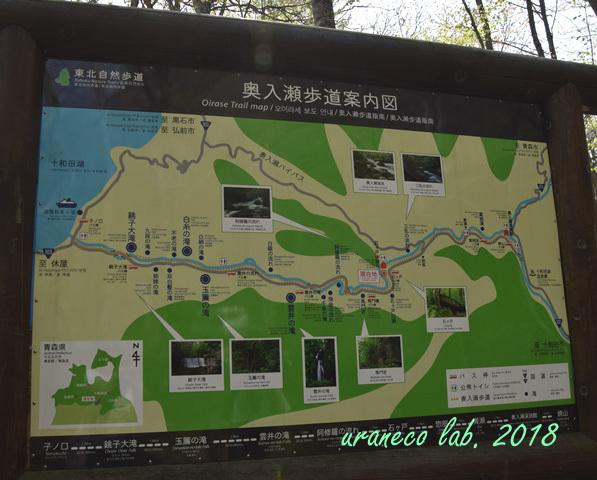 5月7日奥入瀬道案内の図