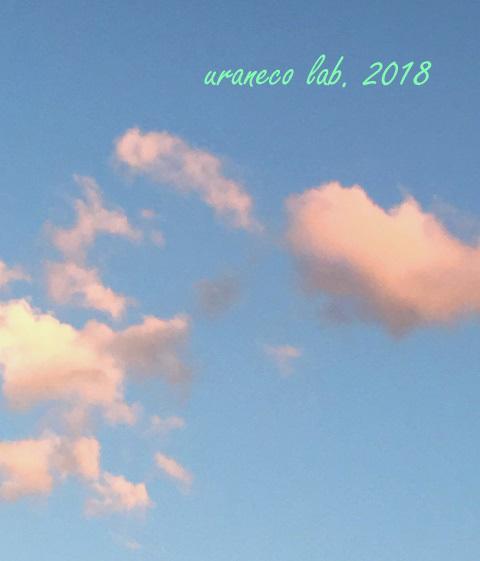 5月30日夕方の雲