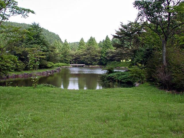 ヒプノセラピー スピリチュアルライフ 原生の森公園
