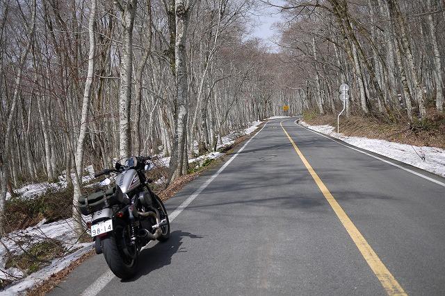 s-10:30県道45