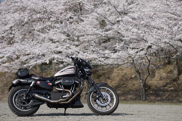 s-8:36桜