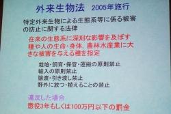 180520okg-2w.jpg