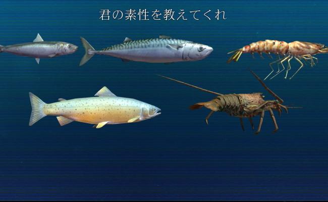 魚のやつ2