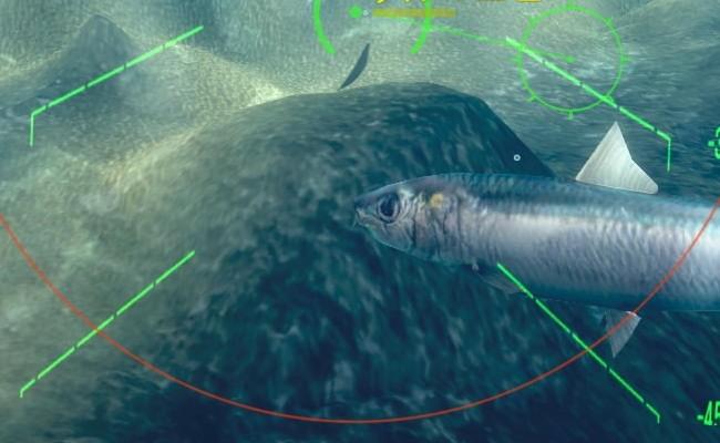 魚のやつ22