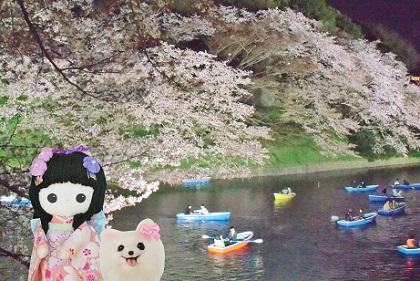 夜桜をボートで楽しむ人々