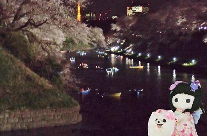 夜桜と東京タワーです