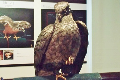 足が気になる鷹